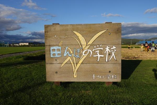 北海道 東川町 小学校 稲刈り
